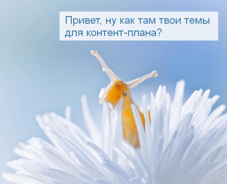 Вопрос тоже помощь