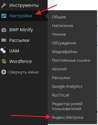 Пункт Яндекс Метрика в WordPress